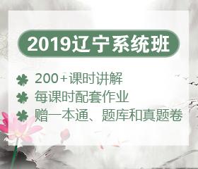 2019辽宁笔试系统班