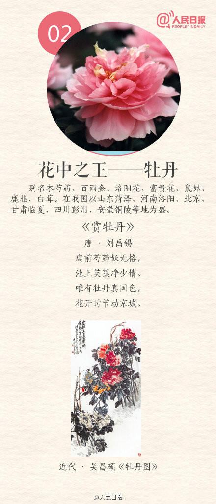 常识积累:中国传统十大名花